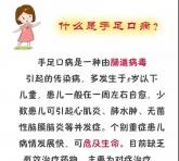 春季手足口病高发期,滨滨幼教给家长的温馨提示