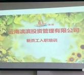 岗前培训,促进专业化成长——滨滨幼教新员工入职岗前培训掠影